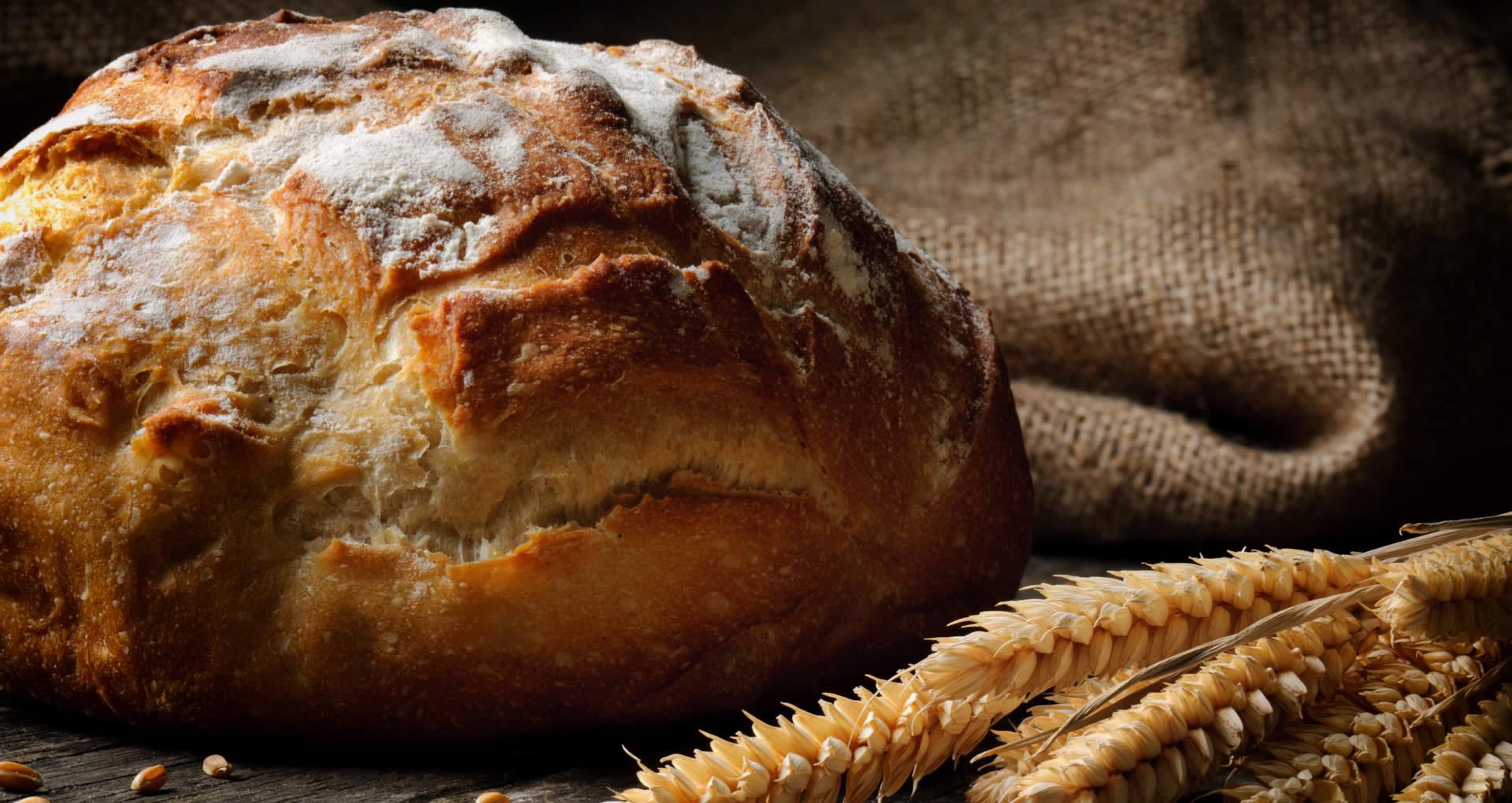 Brot - frisch gebacken